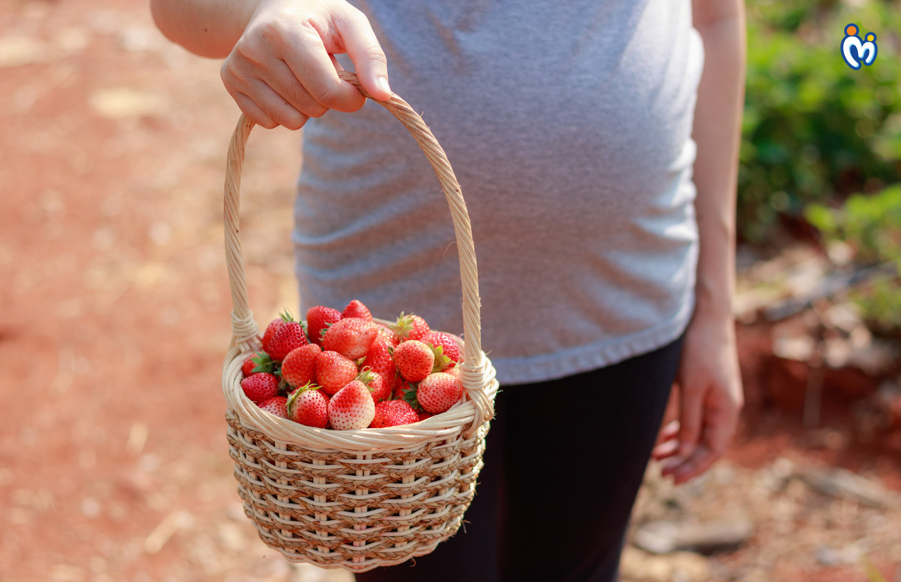 Pregnancy Diet in First Trimester
